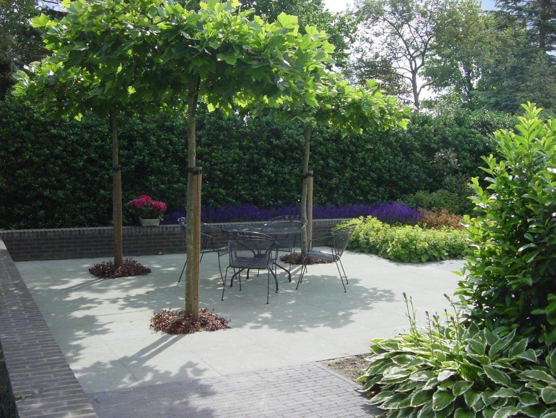 Bartelds hoveniersbedrijf moderne tuin haren
